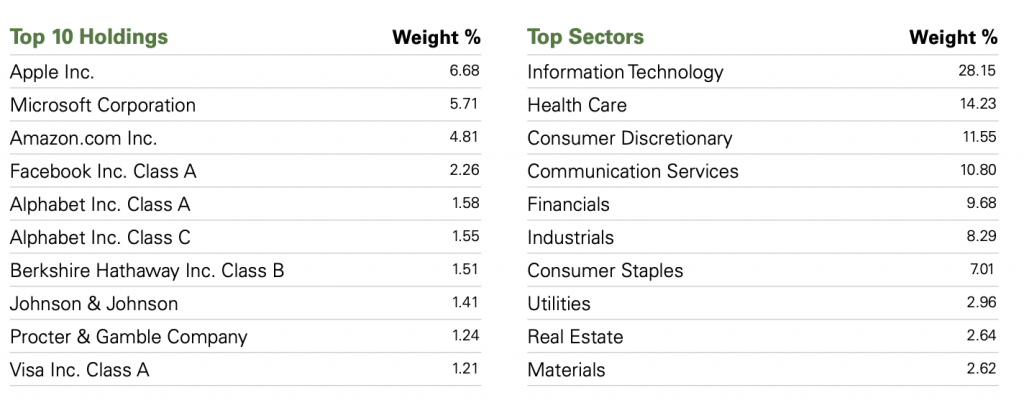 SP 500 Top 10 Holdings