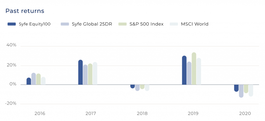 Syfe Equity100 Yearly Return
