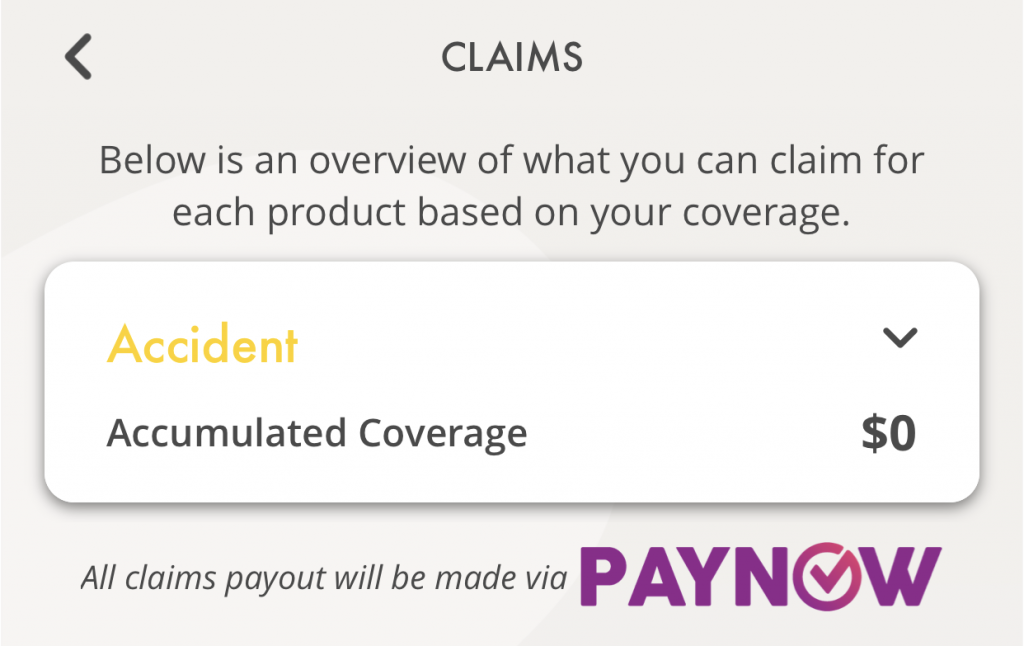 SNACK by Income PayNow