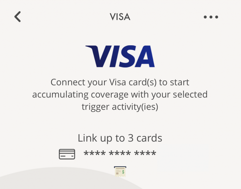SNACK by Income Visa Trigger Maximum 3 Cards